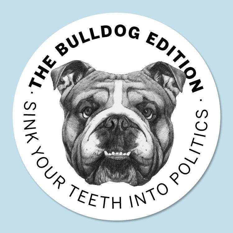 Bulldog face drawings