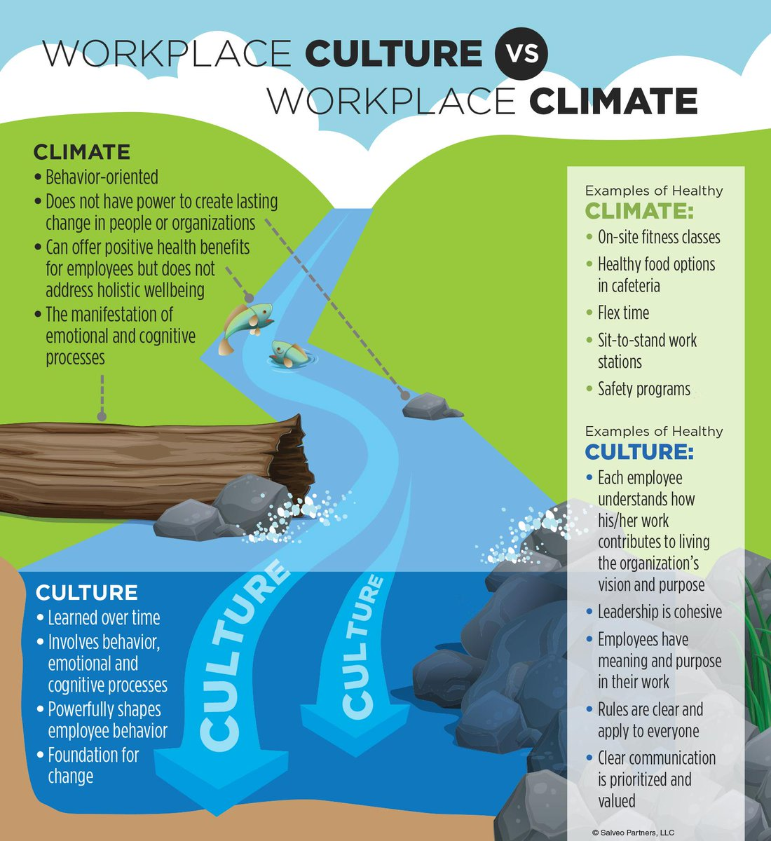 difference between organisational culture and climate