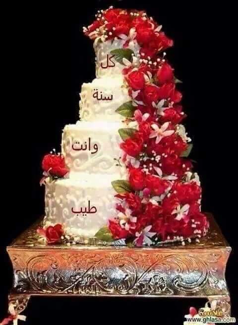 Abo Ramy Gg908g Twitter