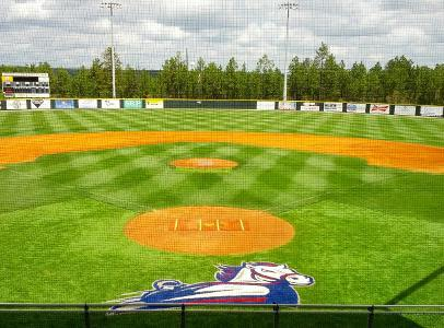 Usc Aiken Baseball >> Mitch Spence On Twitter Proud To Say That I Have Committed