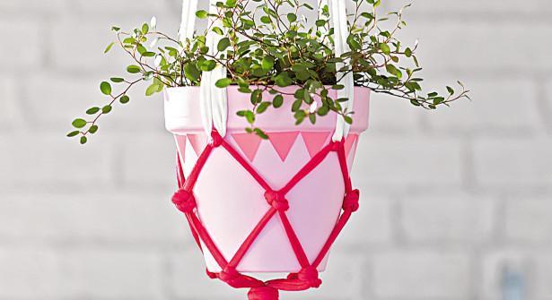 On profite de la belle lumière de ces derniers jours, pour accrocher ses plantes http://t.co/rhVAAgkqXe #DIY #deco http://t.co/AIxKSsW0uo