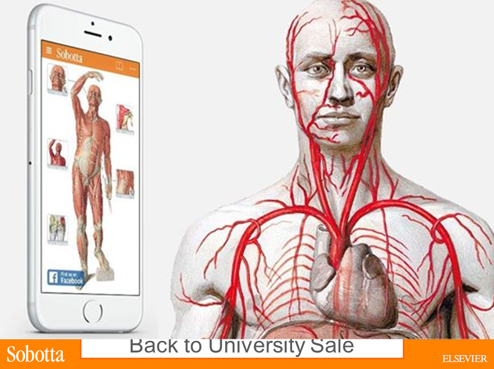 Sobotta Anatomy App (@SobottaApp)   Twitter