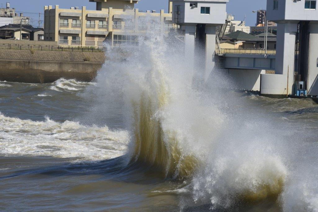 今日の関屋分水です。 http://t.co/O1SkSfRase