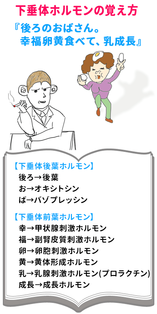 くろすけ(てる) (@19930720teru) | Twitter