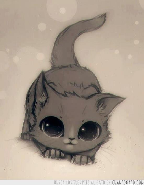 Art Photography On Twitter Anime Cat Cat Kawaii Kittens So Cute To Draw Art Http T Co G4x8lkekun Anime Kitty Http T Co C2sncqvcuc