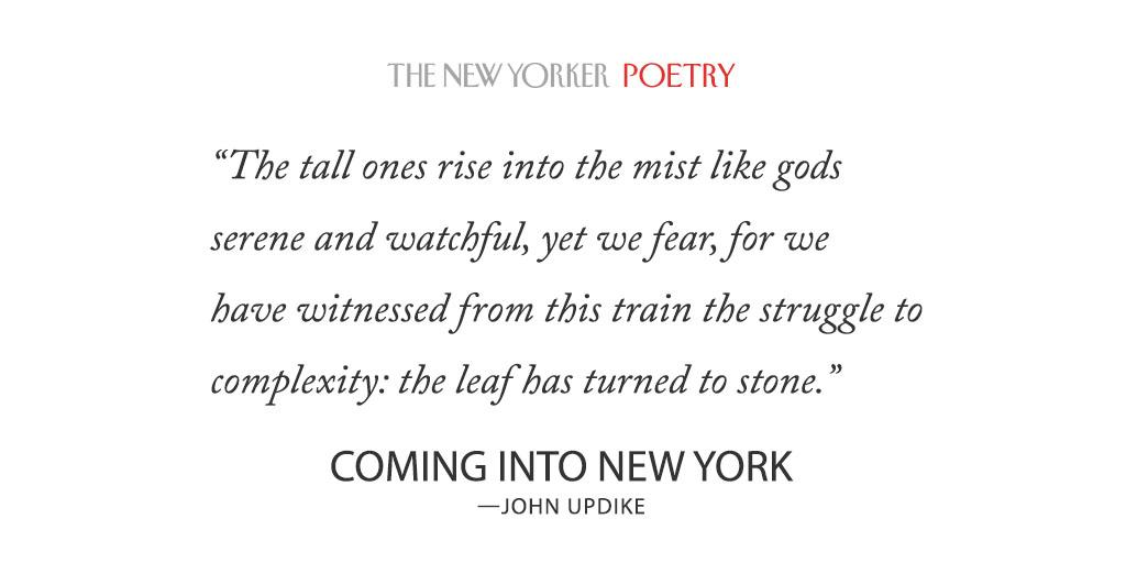 The downside to the story of ap by john updike