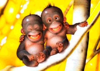 #DiaMundialdelaSonrisa La Sonrisa es el Idioma Universal que nos une a todos. A sonreir.. http://t.co/L9WI56HGjp