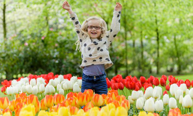 [Oct 9-10] Be ready for the next flower season! Buy your bulbs at @visitkeukenhof in #Lisse http://t.co/9ZVMhPtBhZ http://t.co/yadc8VuQes