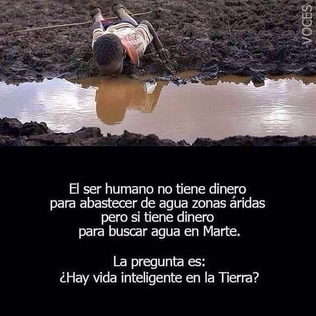Frases Del Dia On Twitter Humans Dont Have Money Enough To Assist