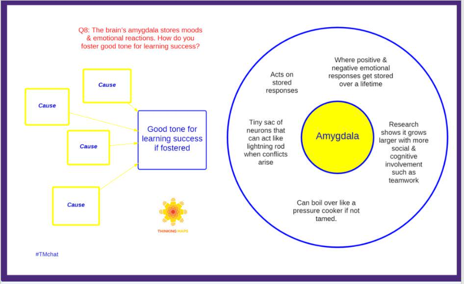Q8: Brain's amygdala stores moods & emotional reactions. How do you foster good tone for learning success? #TMchat http://t.co/oDJSOphS7H