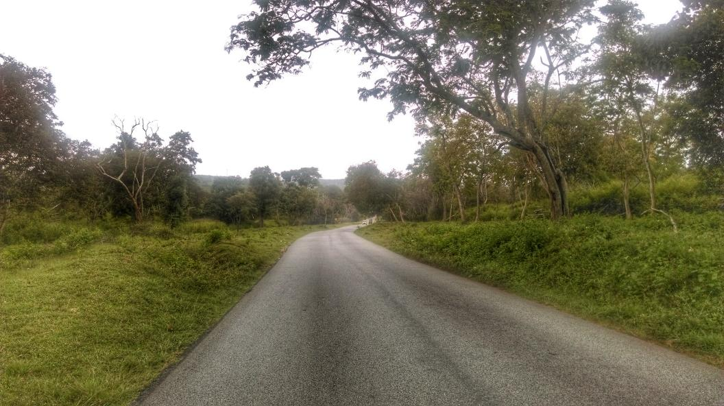 Nearing Bandipur. #hdrscape #snapseed http://t.co/ruDolhvhJC
