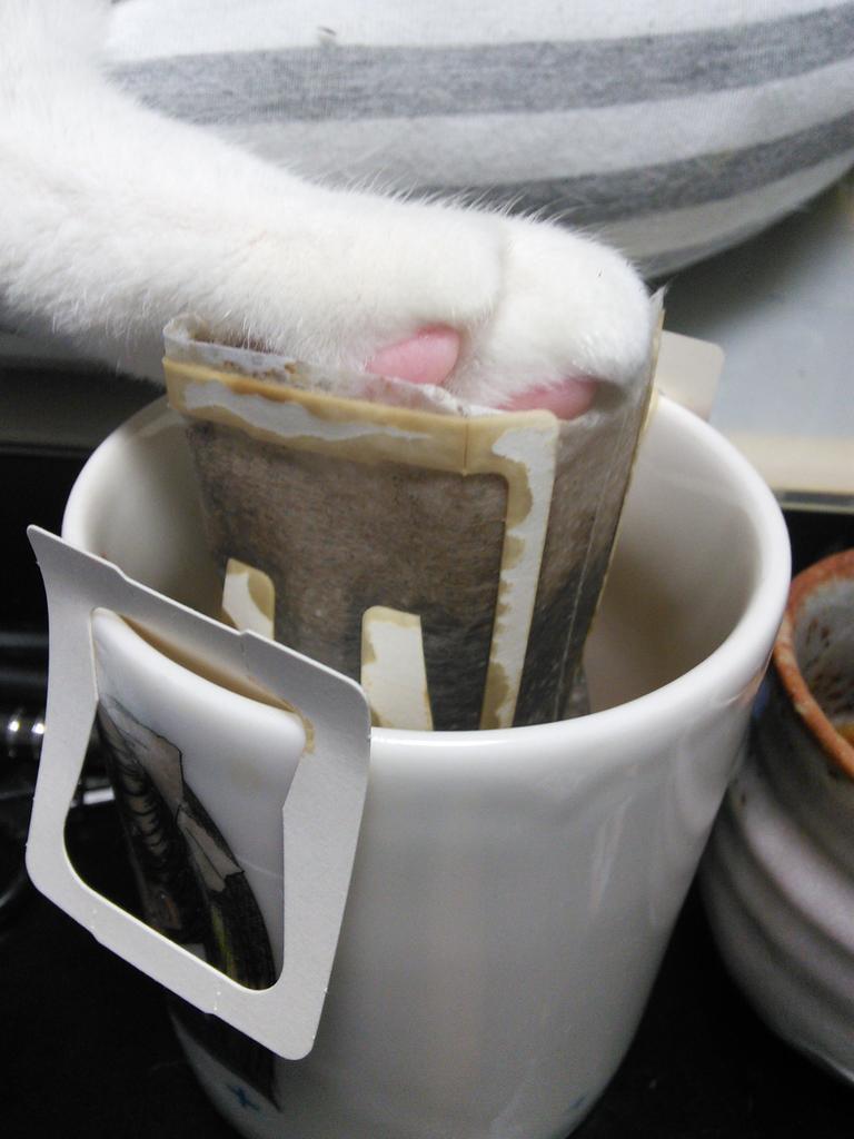 目をはなした隙にコーヒーが飲めなくなってました pic.twitter.com/CM5uR4IjR3