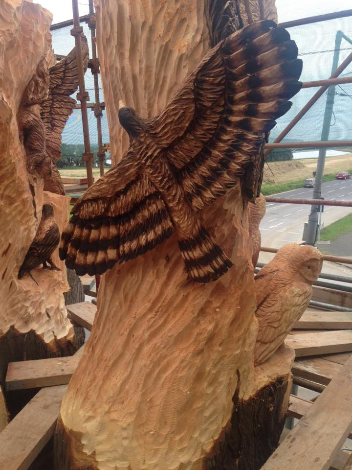 Tommy craggs on twitter quot chainsaw carved hawk part of st