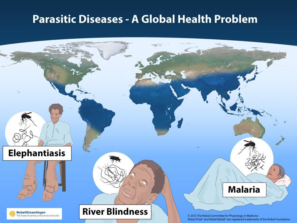 2015 #NobelPrize #Medicine therapies parasitic diseases River Blindness, Lymphatic Filariasis (Elephantiasis),Malaria
