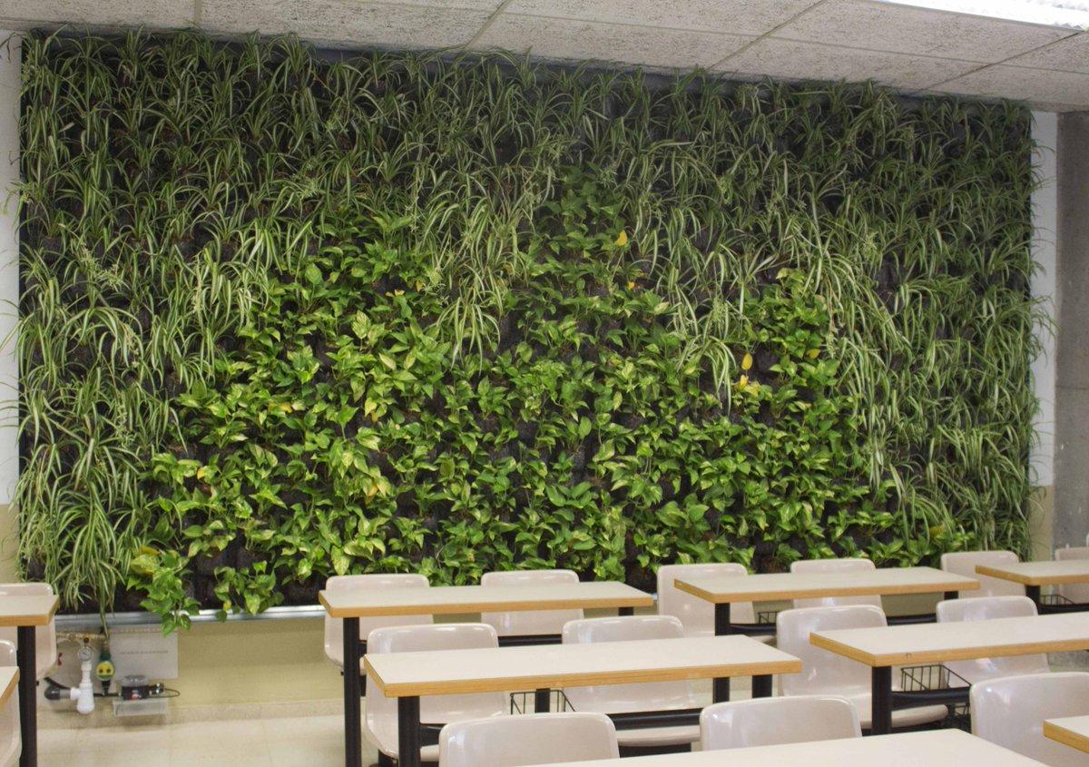 jardin vertical universidad