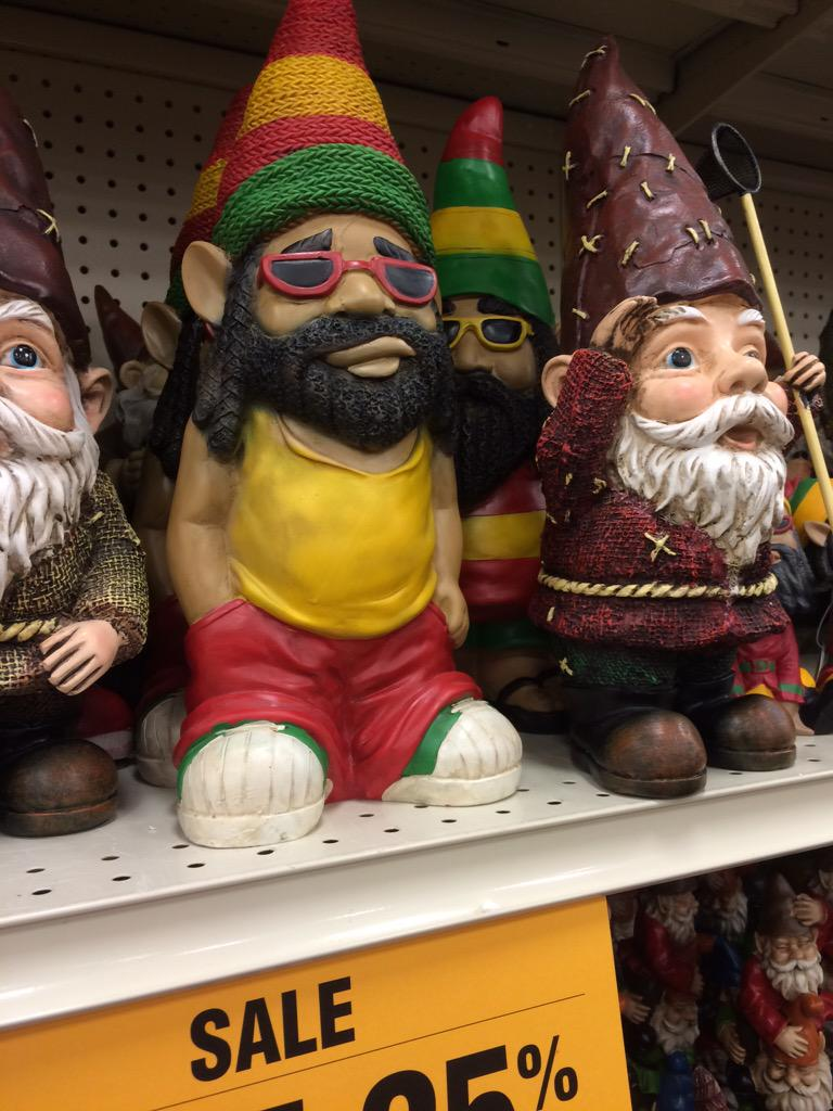 jaina on twitter rasta garden gnomes currently on sale at fred meyer httptcoaigtgt1ycx - Garden Gnomes For Sale