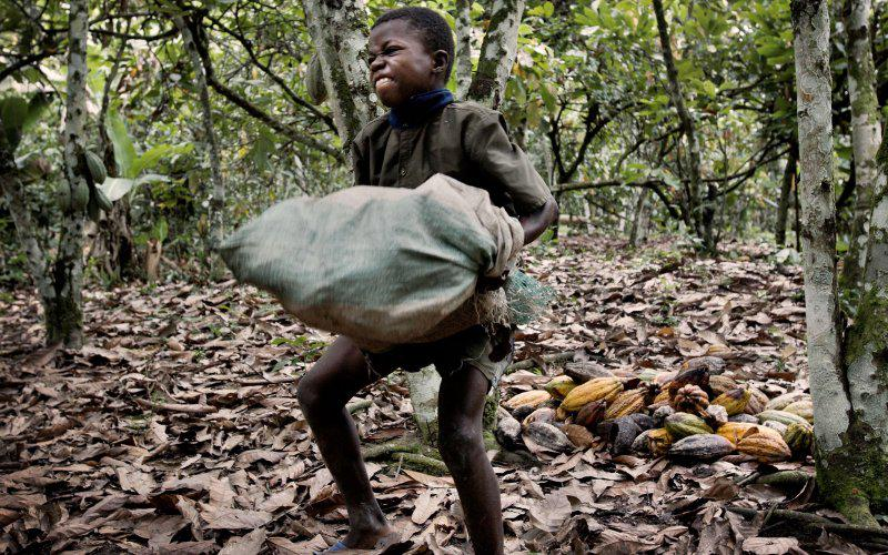 Is your chocolate traffik-free? Hershey, Nestle and Mars face child slavery lawsuit  http://t.co/VEqGrl6ZTS http://t.co/2kZPAGGEEQ