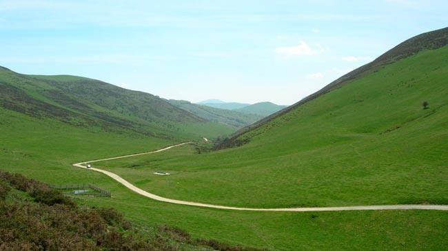 "Turismo Navarra on Twitter: ""Sorogain, la alfombra verde. Sitios ..."