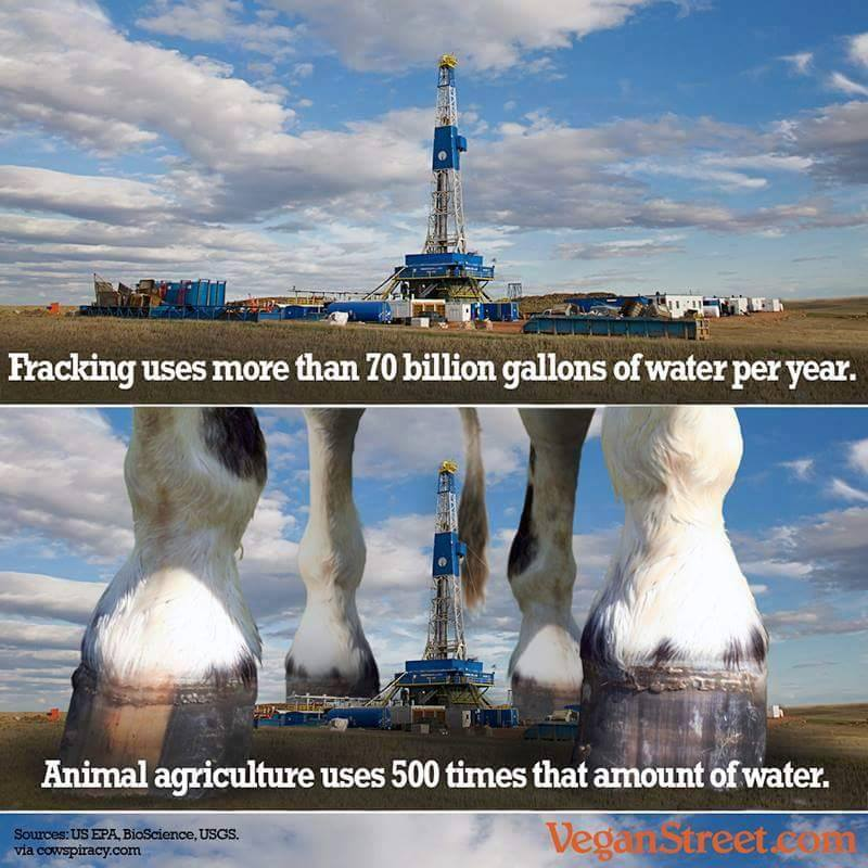 RT @Cowspiracy: Fracking is really bad. Animal agriculture is really, really bad.  Image: @veganstreetcom http://t.co/ZHUVa28R61