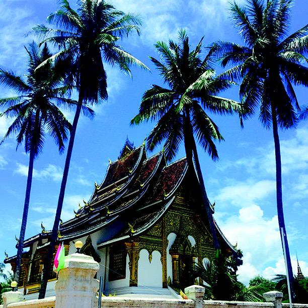#temples and #palmtrees #buddhist #luangprabang #laos #southeastasia http://t.co/yGUwe3Zzo2