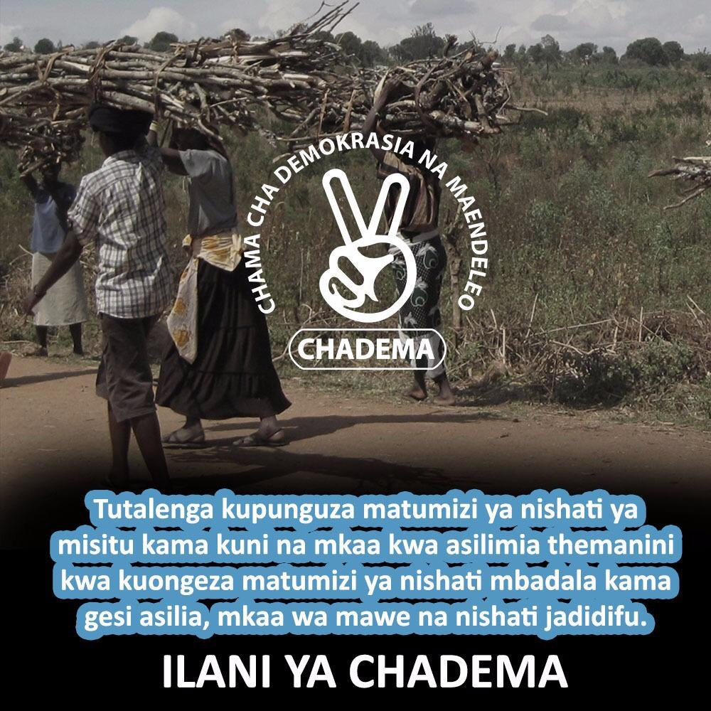 Hii ndio mipango yetu,Huwezi kuwanyima watu kutumia kuni na mkaa kama hujawapa suluhisho.Tumepanga na tutatimiza.