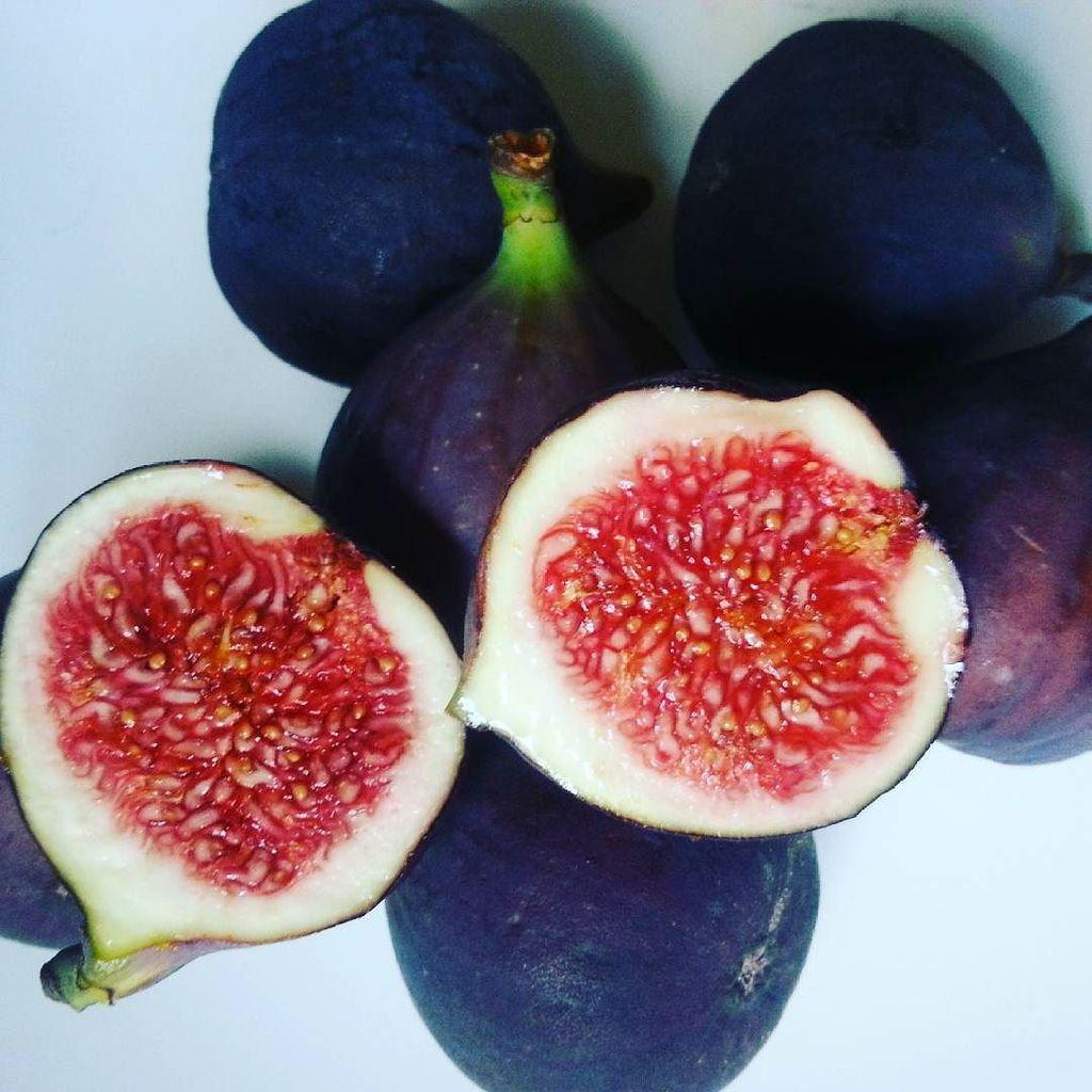 figs and focaccia bread recipe