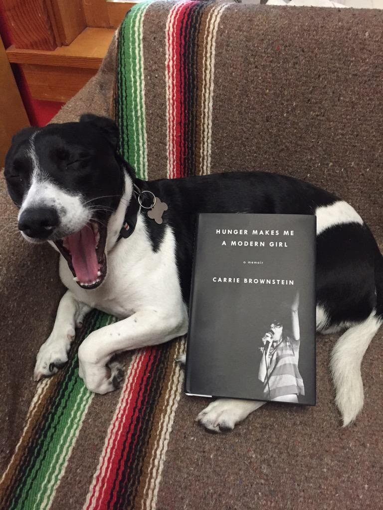 Our office pup does a pretty mean @Carrie_Rachel impression to celebrate @riverheadbooks #Hungermakesmeamoderngirl http://t.co/sB1cfP4KTc
