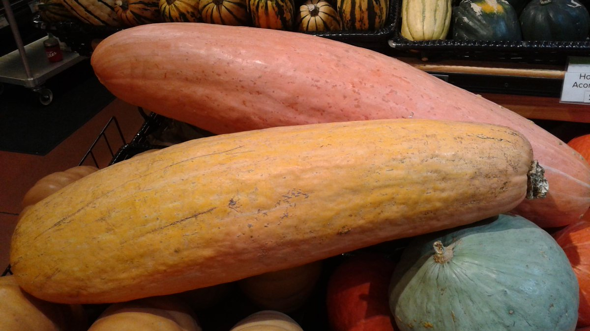 Gete-okosomin Squash at Franklin store--from 800 year old heirloom seed saved by White Earth seed savers http://t.co/z5fm0nM3Wz