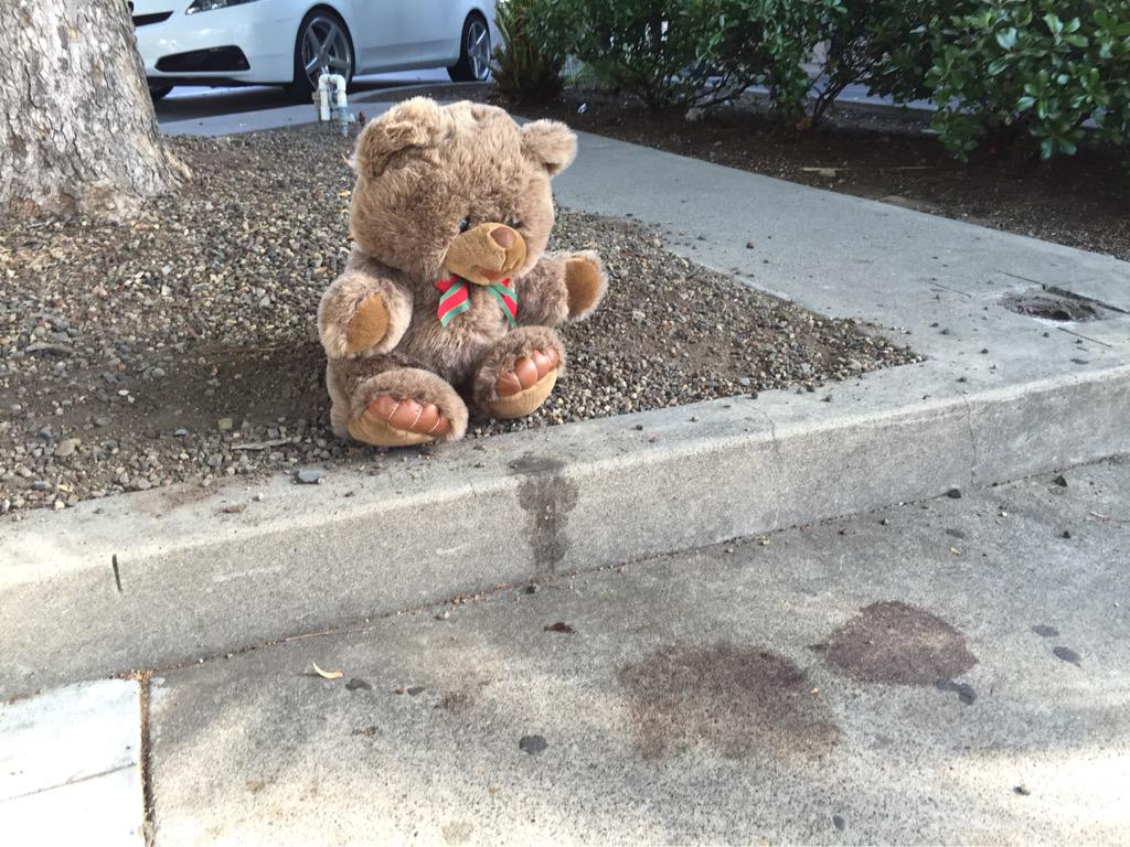 Spencer Stone stabbing: a man just put teddy bear next to dried blood stain, walked away, declined to talk http://t.co/5cQFYRgDaF