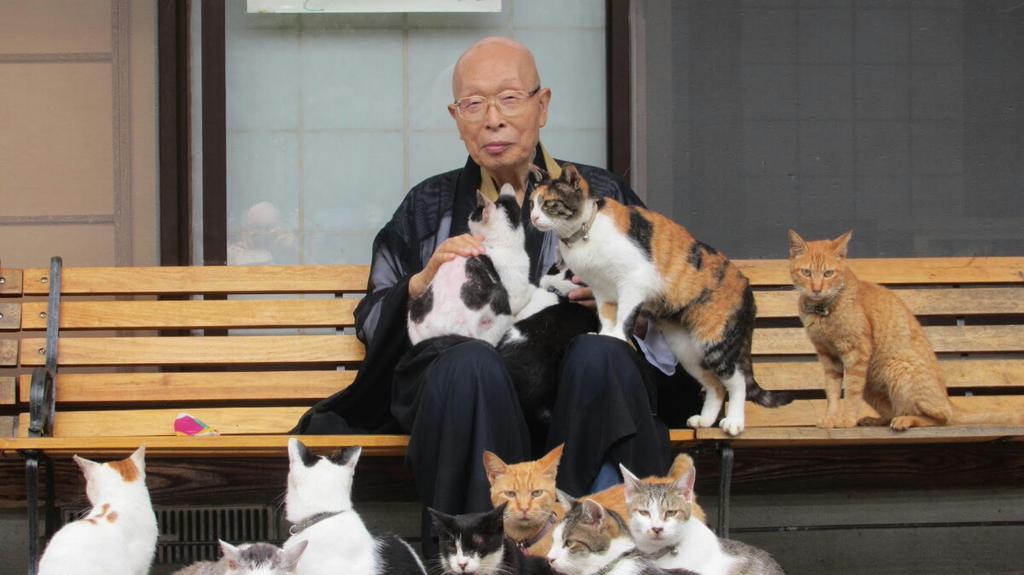 「ほんものの猫寺というものを見せてやりますよ」 pic.twitter.com/3SYLW4ZVkK