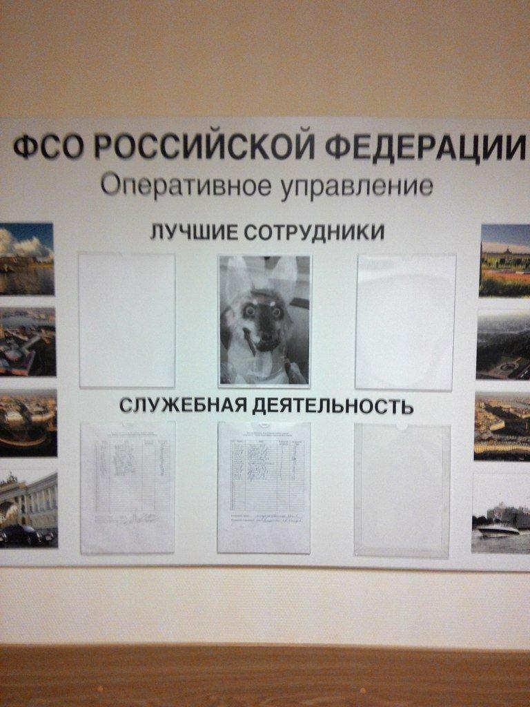 Дело Савченко: в российском суде допрашивают секретного свидетеля - Цензор.НЕТ 275