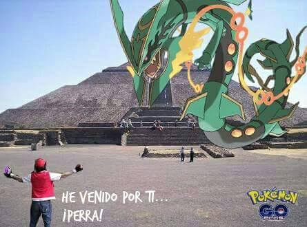 how to catch a rayquaza in pokemon go