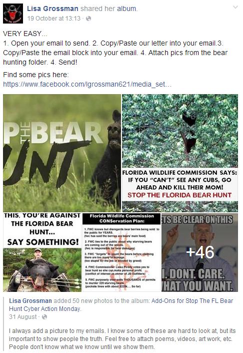 nobearhunt hashtag on Twitter