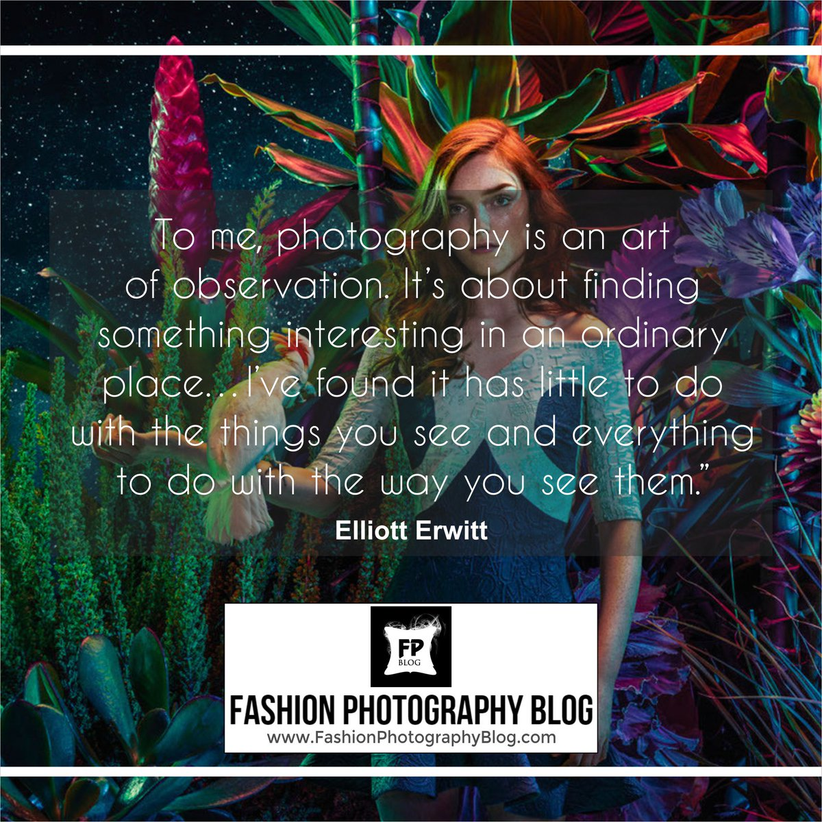 """""""#Photography is an art of observation"""". For more #photographyinspiration visit https://t.co/6VRubwJmTn Please RT https://t.co/U8rihuTGrn"""