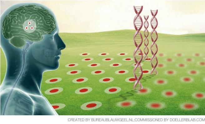 Svolta nella cura del morbo di Alzheimer