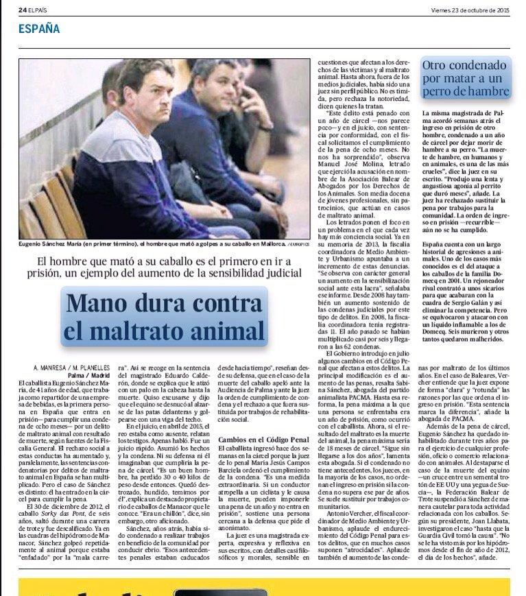 Uomo condannato al cercer per aver ucciso un cavallo in Spagna.
