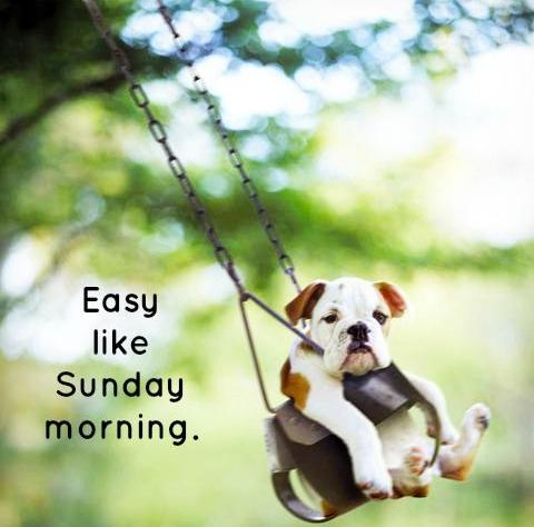 Eurolines Care On Twitter Sunday Morning Greetings Everyone Amy