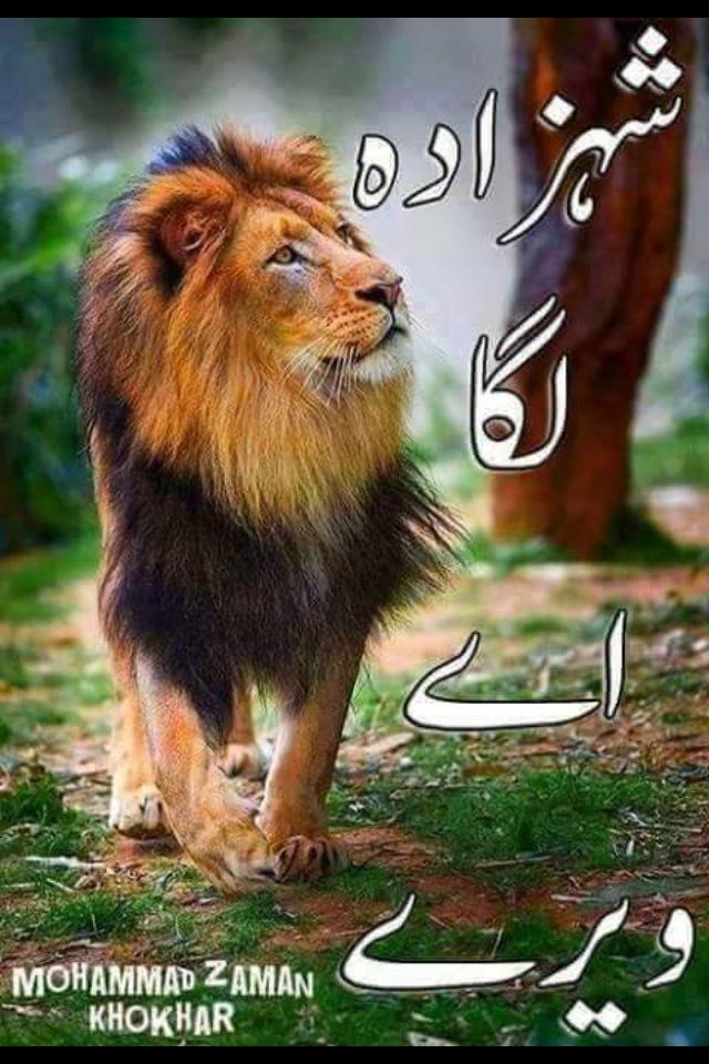 M.Tahir Latif Gujjar on Twitter: