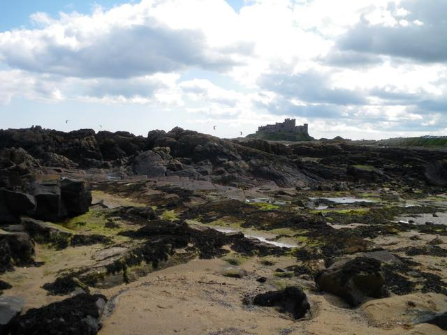 Bamburgh Castle, looking great. http://t.co/e498cQvM5K