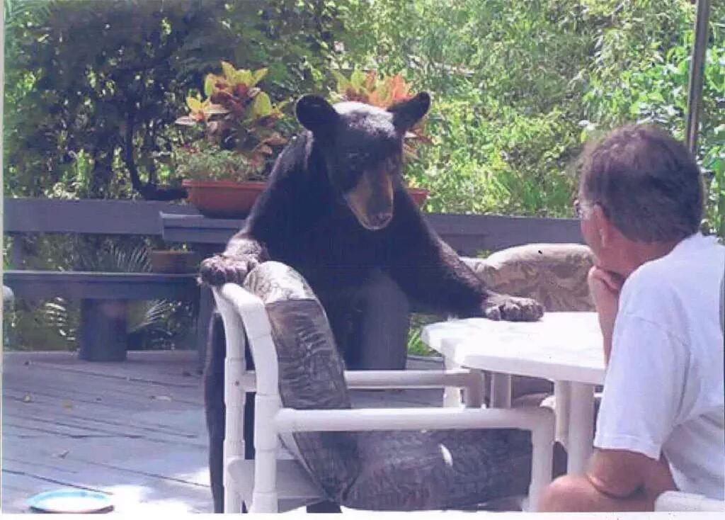 """so then I told this bitch """"fuck you and this kayak"""" http://t.co/06LHcthn26"""