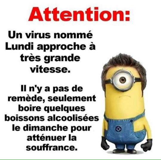 Sa r na van e j on twitter attention humour minions lundi - Les minions amoureux ...