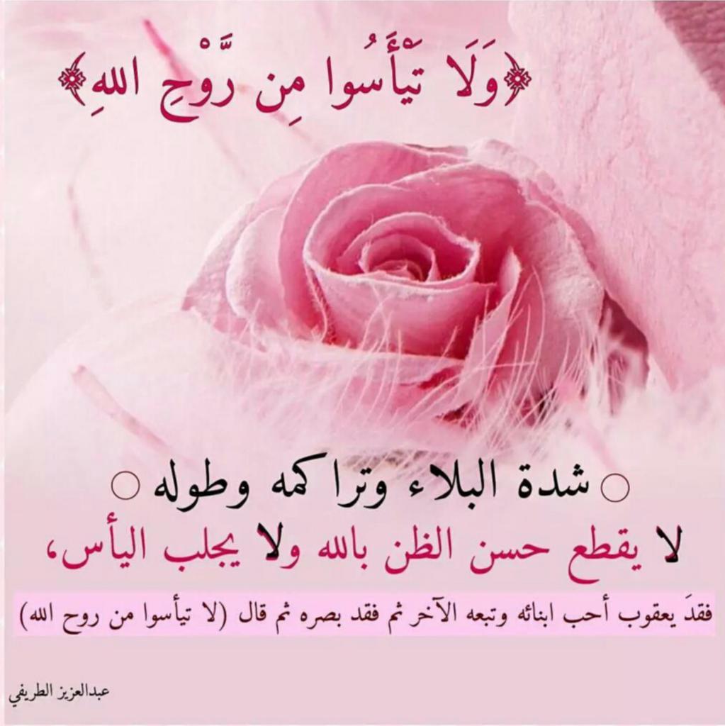 Prof Dujana Alayoubi Genetics Professor On Twitter وﻻ تيأسوا من روح الله Https T Co 3zz8ixe2ho