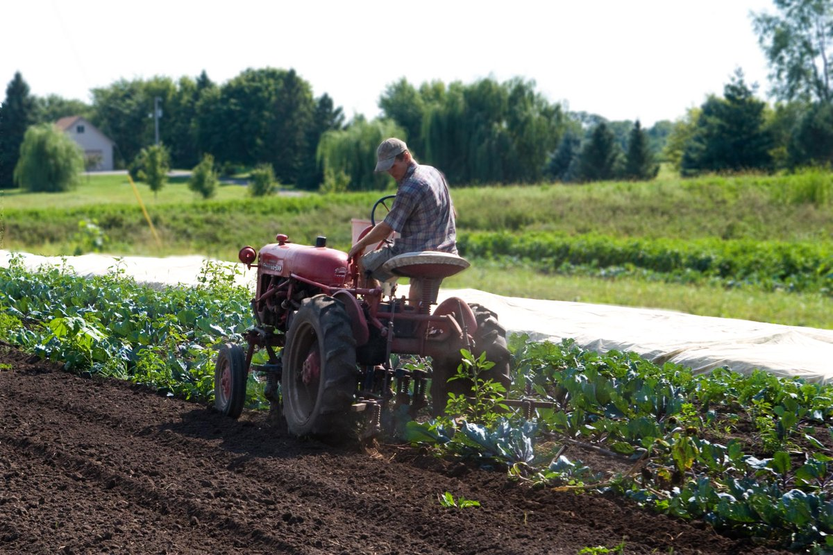 It's #NationalFarmersDay! A huge THANK YOU to the farmers who help feed our kids healthy, local food. #ThankAFarmer http://t.co/ee23GM9h22
