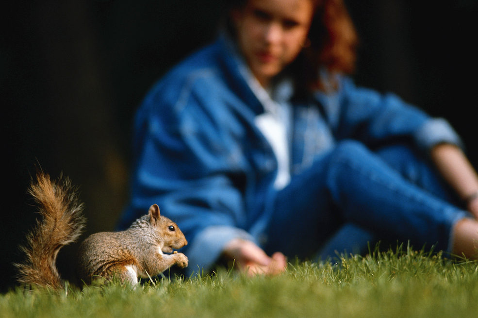Meet the adorable squirrel that is literally part of the family! http://t.co/ye4wpMmQ6g http://t.co/2X8TVSpSiY
