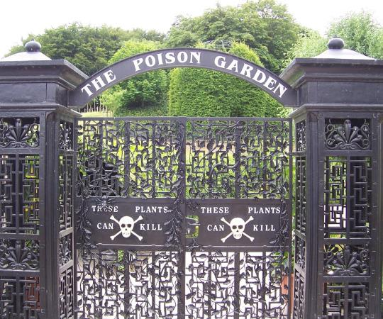 The Poison Garden comes with its own deadly warning! http://t.co/65TuLM30Ac #poisiongarden #alnwickgarden #plants http://t.co/srCk8YQBYZ
