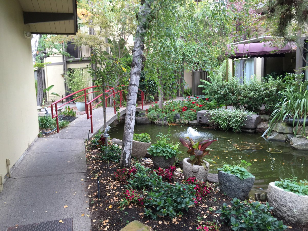 Just arrived at my hotel, Dinah's Garden Hotel, in Palo Alto for #dLRN15. What a cool place http://t.co/YgHDnznrwI