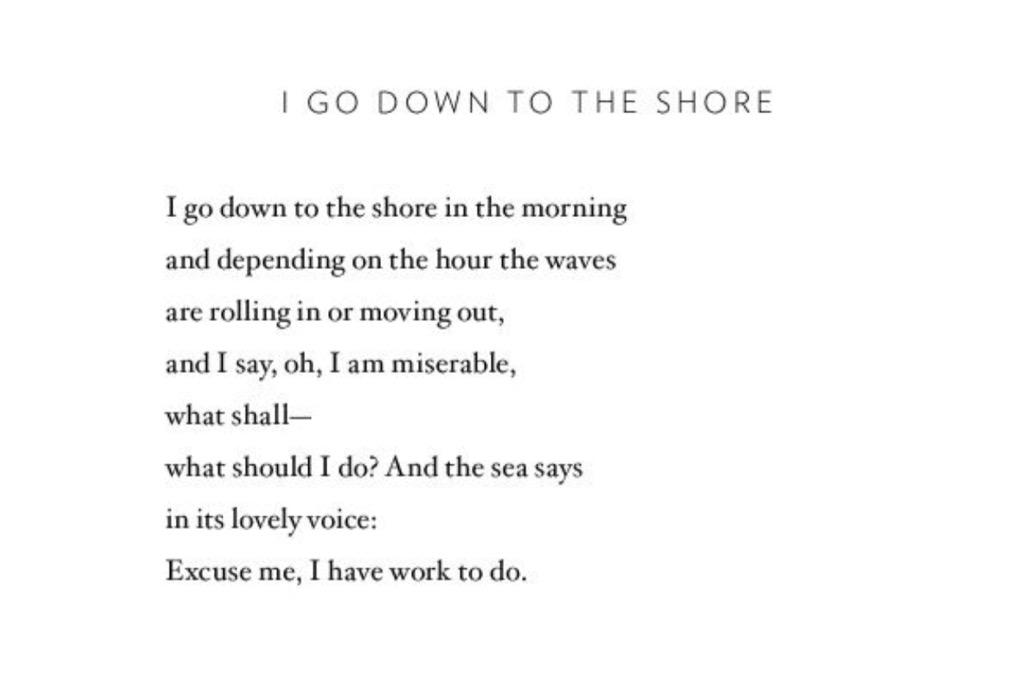 Kate Greer On Twitter Quot Mary Oliver I Go Down To The
