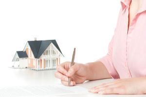 договор аренды с правом субаренды нежилого помещения образец