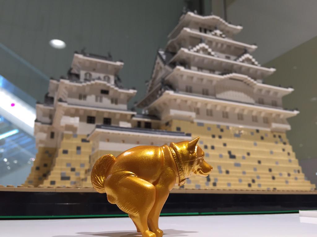 城と金のいきむ犬