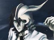 bleach quotes on those who know despair once knew hope